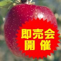 【江刺りんご】即売会開催