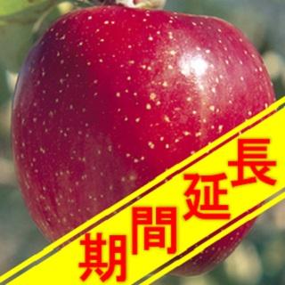 【江刺りんご】承り期間延長